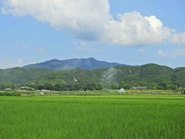 atagoyama0853.jpg